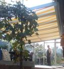 Unterglasbaumarkise am Kaltwintergarten